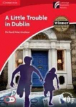 A Little Trouble in Dublin. Cambridge